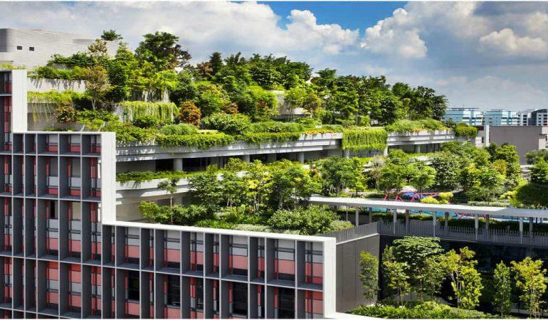 Tout savoir sur l'architecture écologique